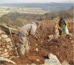Building a Cornish hedge on Deer Park Farm